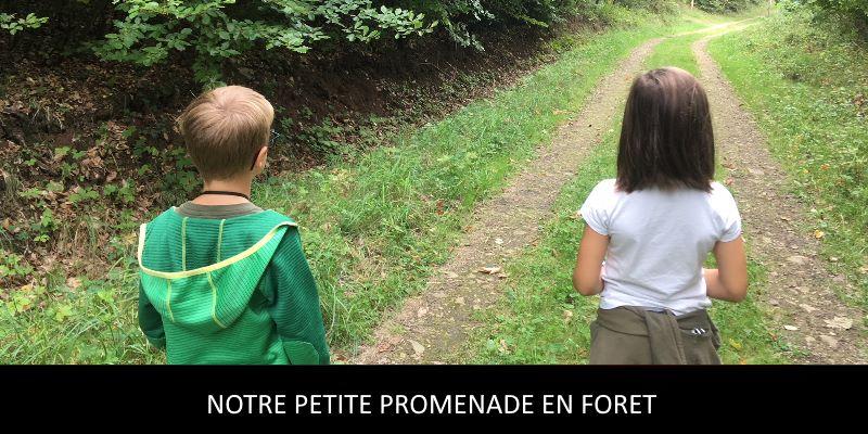 """Petite promenade en forêt """"Luxembourg"""""""