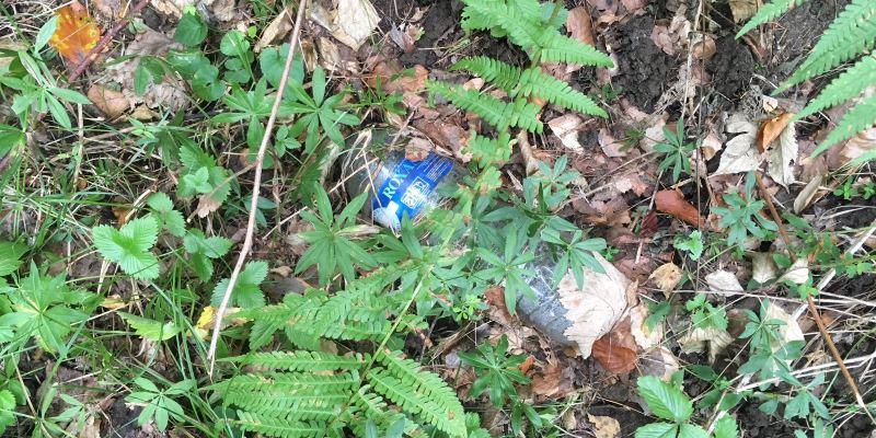 Une bouteille d'eau de la marque Roxane, je pense que la marque n'apprécierait pas de retrouver ses bouteilles dans la nature, qu'en pensez-vous ?