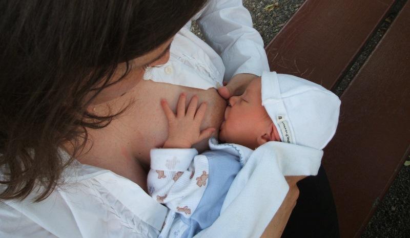 L'allaitement maternel 03