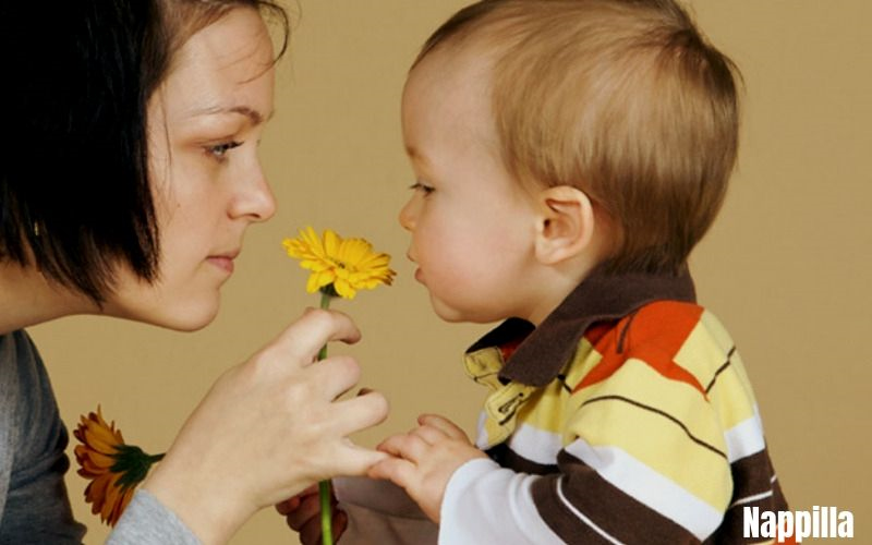 L'odorat chez l'enfant