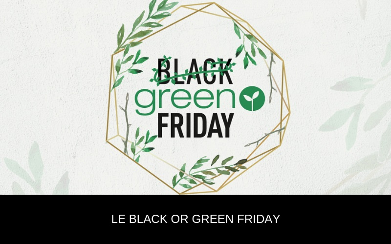Black ou Green friday ?