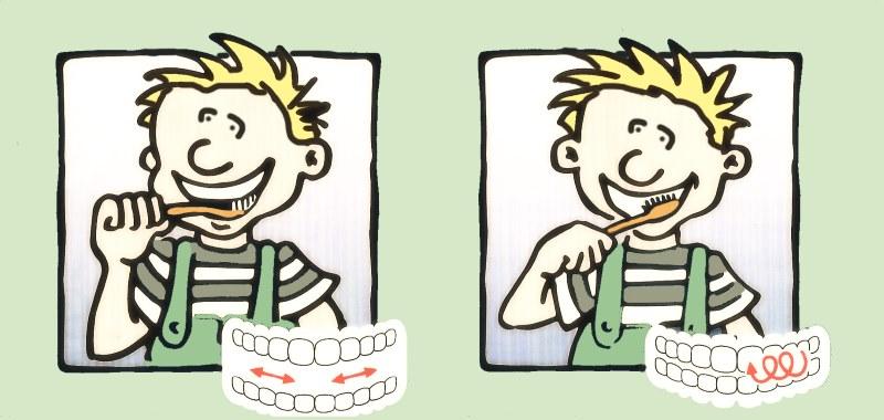 Méthode simple mais efficace pour un brossage de dents pour enfant.  01 Nappilla