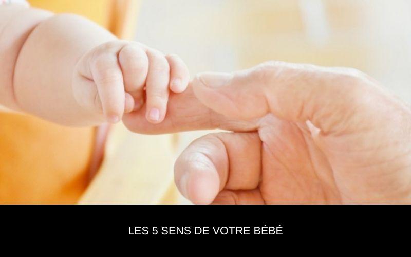 Les 5 sens de votre bébé - Nappilla