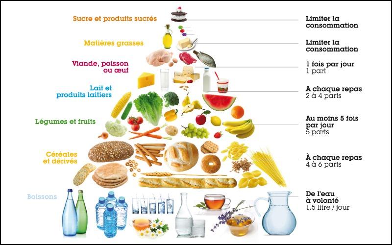 La pyramide alimentaire est un tableau qui permet de voir les aliments par ordre d'importance pour avoir un régime équilibré.