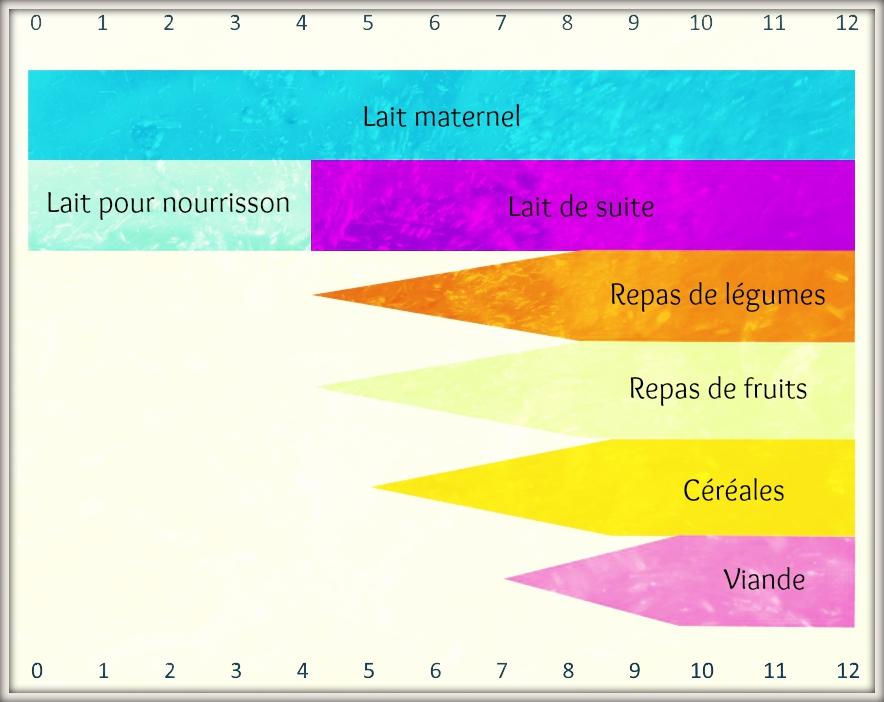 tableau concernant l'alimentation de votre enfant par nappilla luxembourg