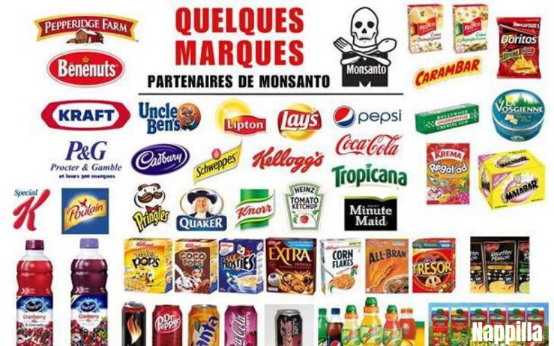 la-liste-des-produits-monsanto-bayer-a-boycotter-en-2020