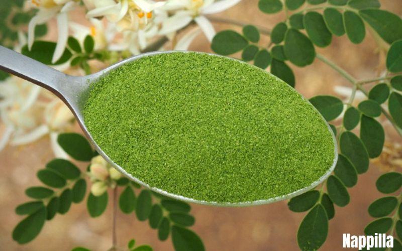 Une cuillère ou deux de moringa par jour pour ta santé - Nappilla
