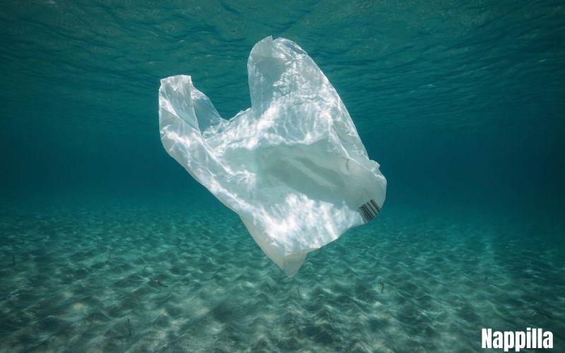 Alternatives aux sacs plastique - Nappilla -Luxembourg