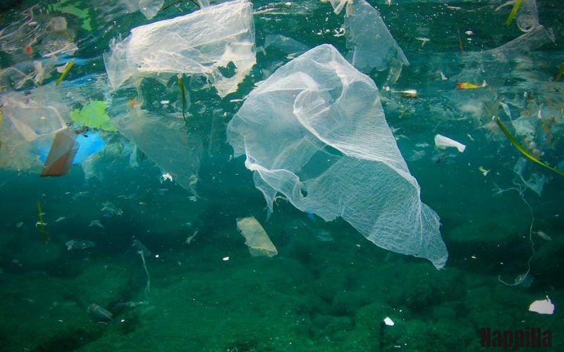 des sacs plastiques jetés à la mer -  Nappilla blog