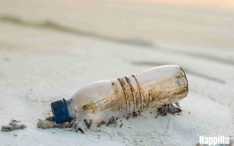 Qu'est-ce qui est le mieux pour l'environnement ? Le verre ou le plastique ? - nappilla 7