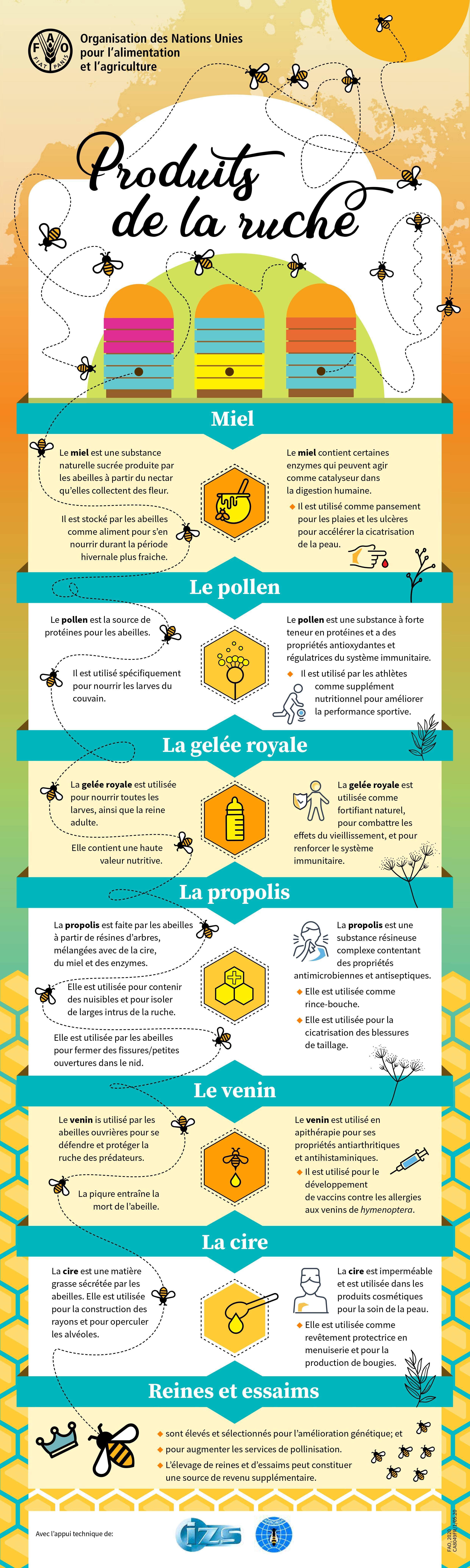 Infographie-sur-les-produits-de-la-ruche---Nappilla-blog-