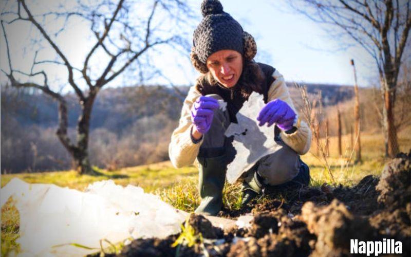 Comment diminuer les microplastiques - pourquoi diminuer les microplastiques. Comment en venir à bout  - Nappilla Blog - Luxembourg
