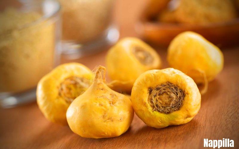 La maca - Les meilleurs compléments nutritionnels bio pour garder la forme  - Nappilla Blog - Luxembourg