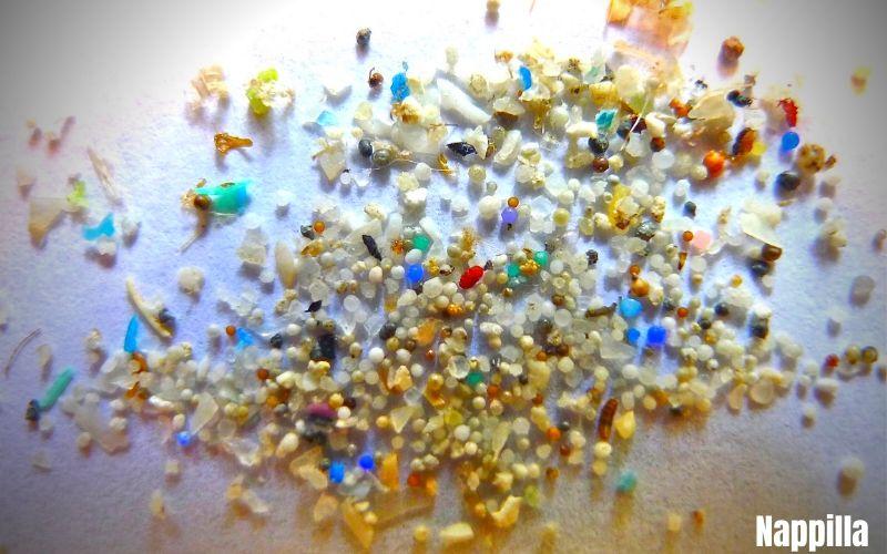 microplastique-pollution-environnement-dans-l-ocean-comme-sur-terre-nappilla  - Nappilla Blog - Luxembourg