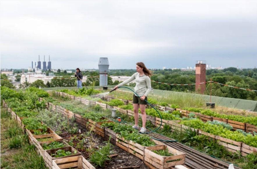 Quels produits zéro déchet durables pour une écologie urbaine efficace ?