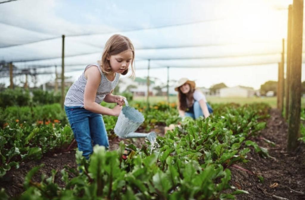 Sensibiliser les enfants : quelles sont les notions d'écologie à enseigner ? Nappilla blog