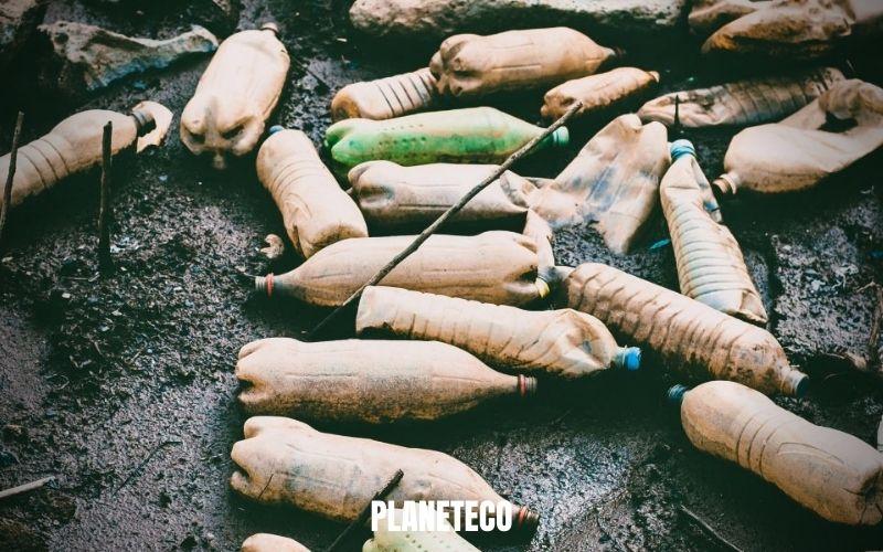 La pollution par les microplastiques est omniprésente !