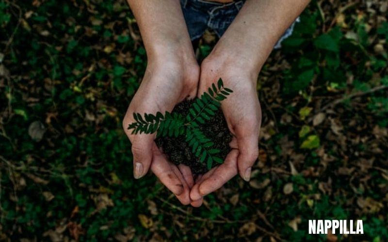 6 solutions intelligentes pour les entreprises respectueuses de l'environnement