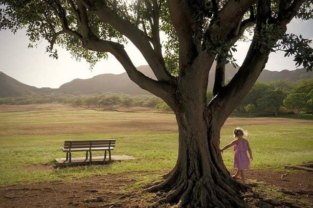 sensibilisation environnement 6 astuces pour initier son enfant en douceur